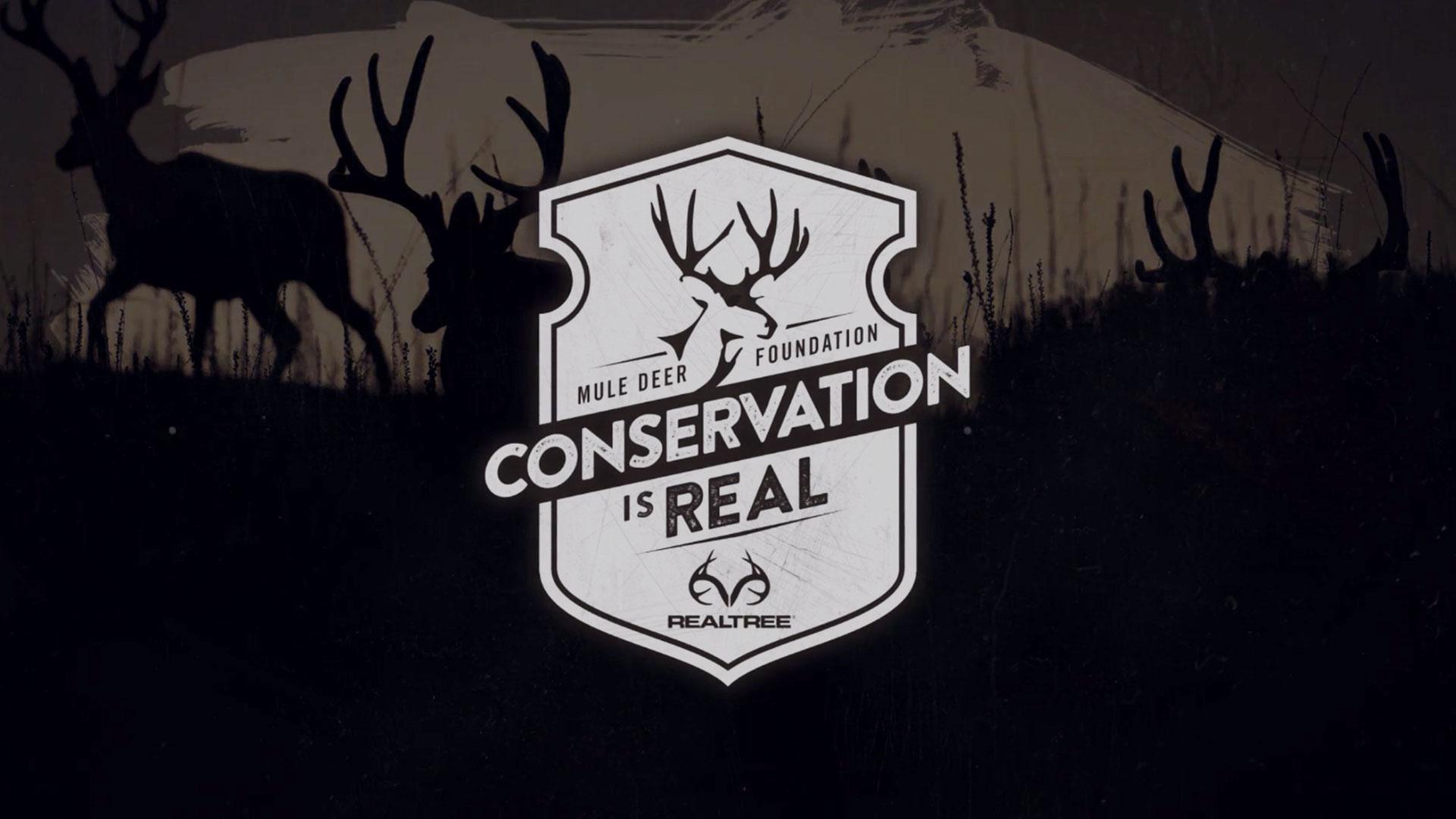 conservationisreal-vid-hover
